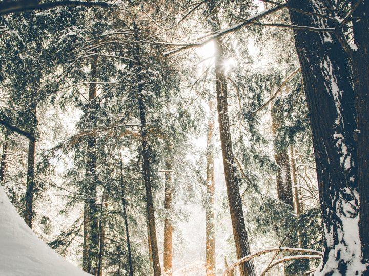 Ni camiseta térmica ni forro polar, la ropa de esquí de lujo está hecha con cashmere